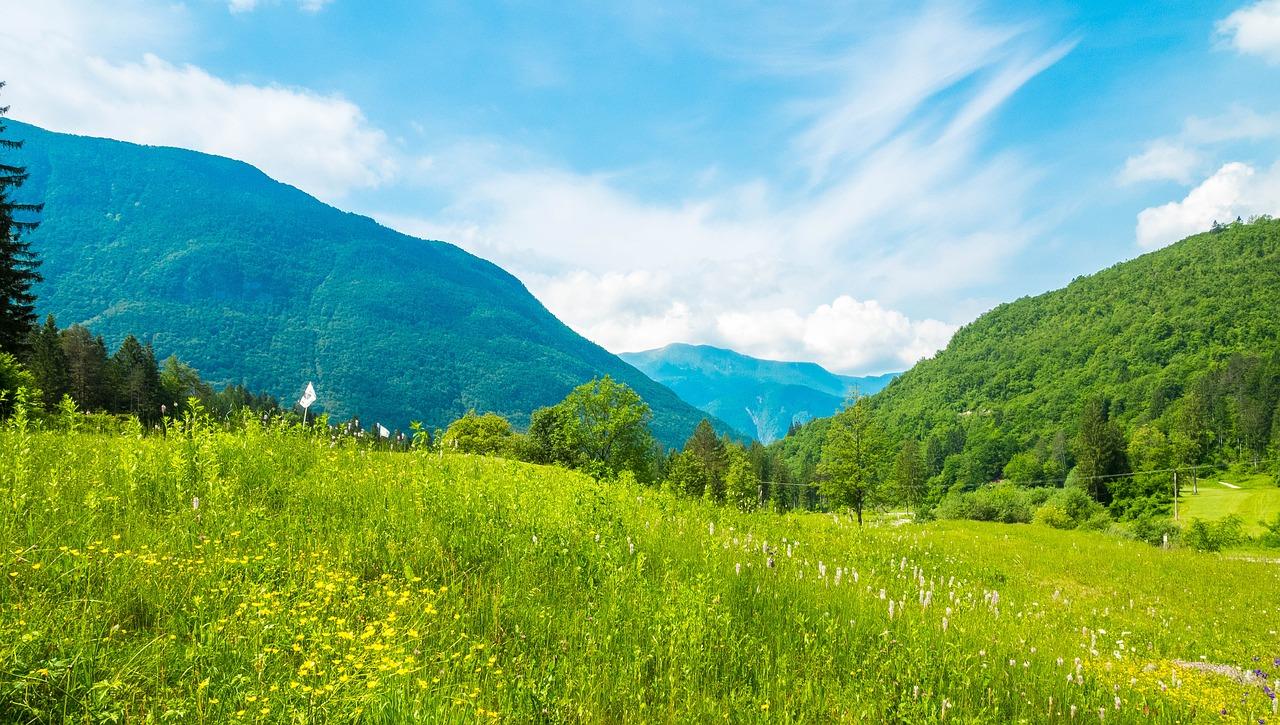 """Avstrijsko-slovensko zeleno mejo varujejo oklepniki LMV """"husar"""" 4×4"""